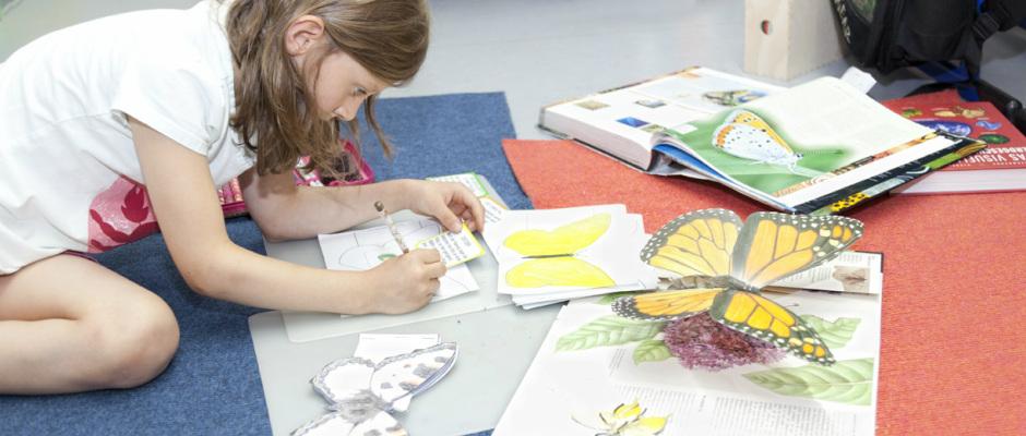 Grundlagen der Montessori-Pädagogik